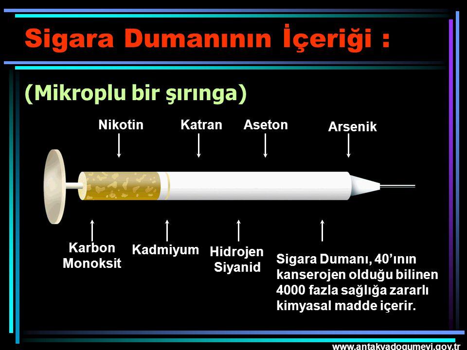 Sigara Dumanının İçeriği : (Mikroplu bir şırınga)