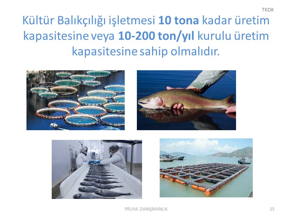 Kültür Balıkçılığı işletmesi 10 tona kadar üretim kapasitesine veya 10-200 ton/yıl kurulu üretim kapasitesine sahip olmalıdır.
