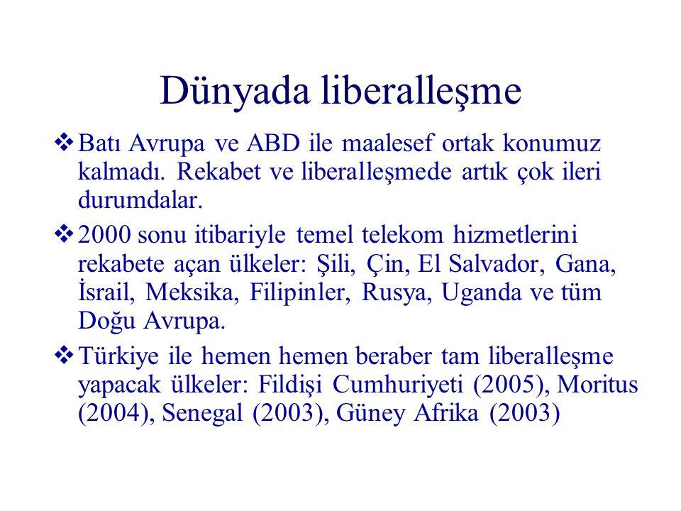 Dünyada liberalleşme Batı Avrupa ve ABD ile maalesef ortak konumuz kalmadı. Rekabet ve liberalleşmede artık çok ileri durumdalar.