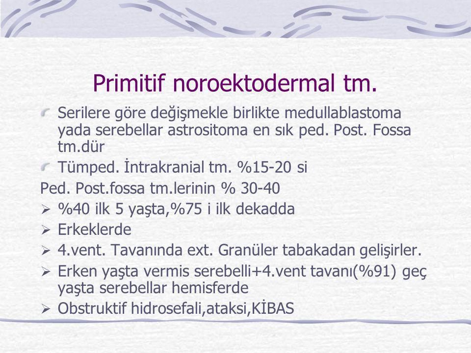 Primitif noroektodermal tm.