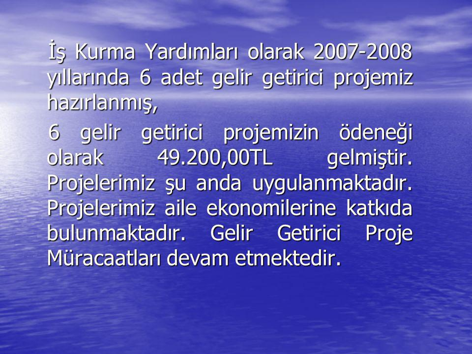 İş Kurma Yardımları olarak 2007-2008 yıllarında 6 adet gelir getirici projemiz hazırlanmış, 6 gelir getirici projemizin ödeneği olarak 49.200,00TL gelmiştir.