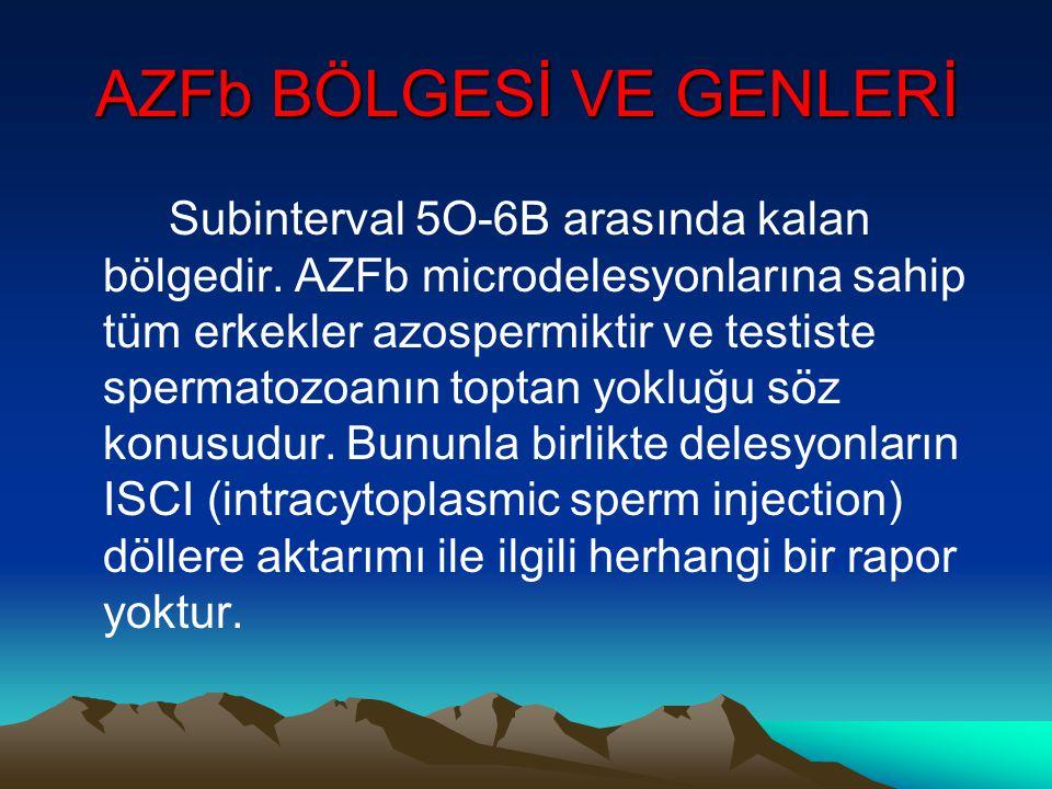 AZFb BÖLGESİ VE GENLERİ
