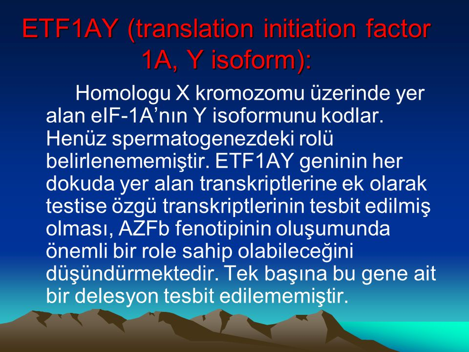 ETF1AY (translation initiation factor 1A, Y isoform):