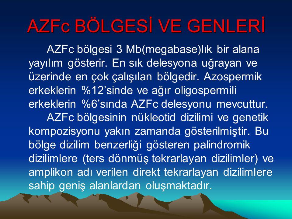 AZFc BÖLGESİ VE GENLERİ