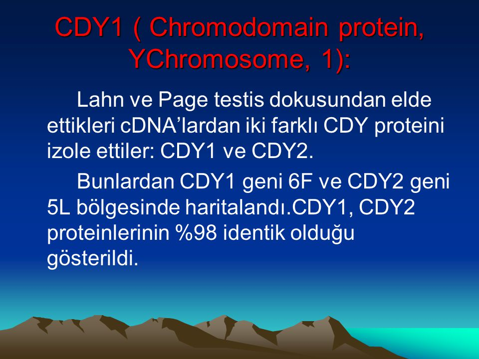 CDY1 ( Chromodomain protein, YChromosome, 1):
