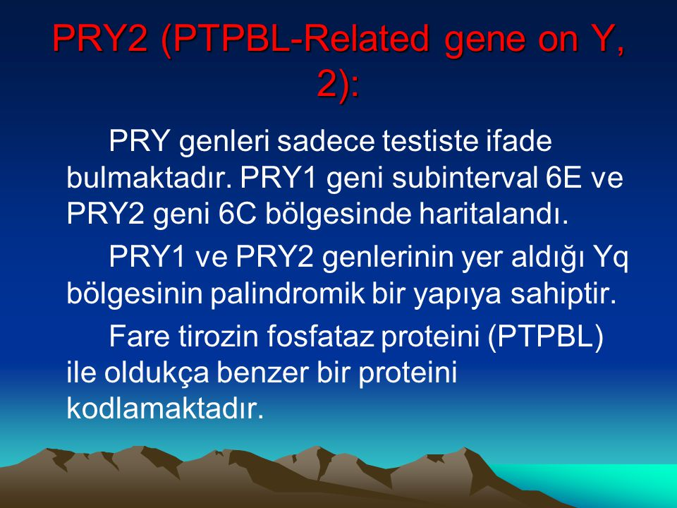 PRY2 (PTPBL-Related gene on Y, 2):