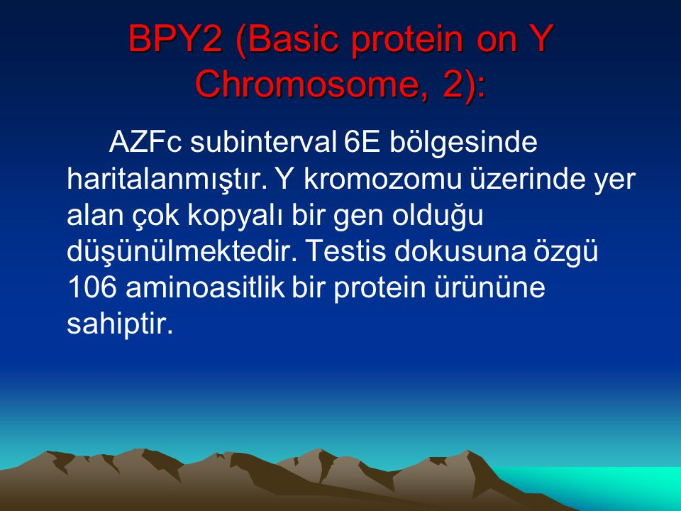 BPY2 (Basic protein on Y Chromosome, 2):