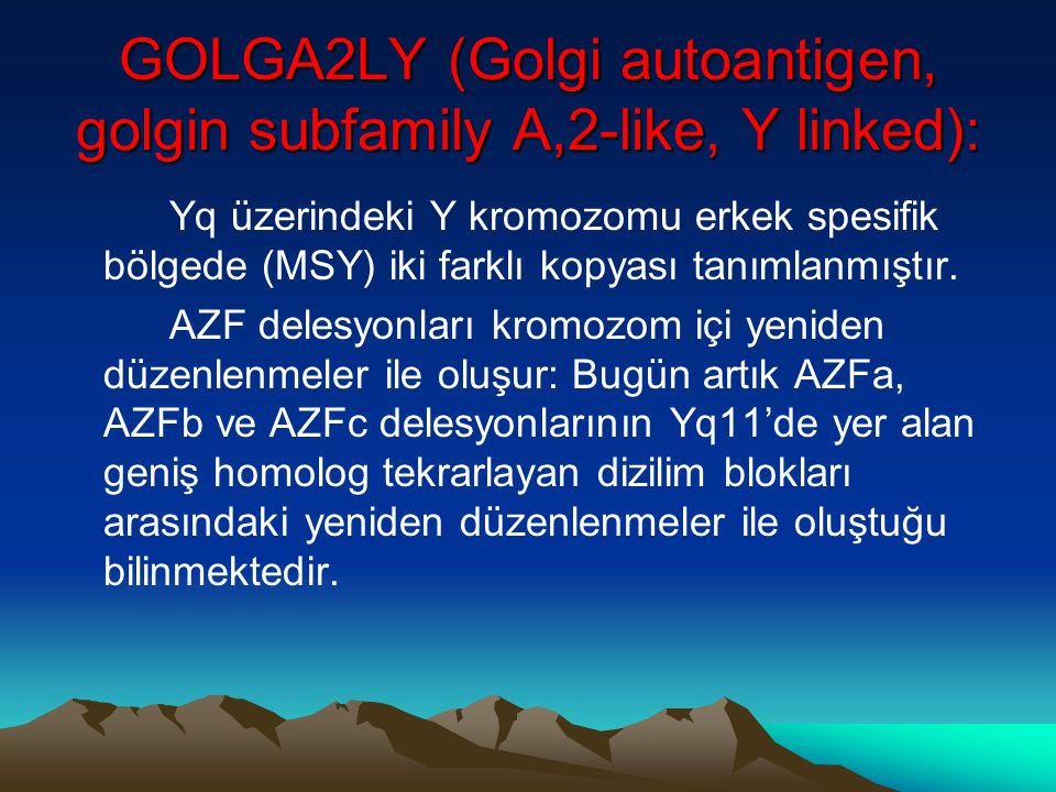 GOLGA2LY (Golgi autoantigen, golgin subfamily A,2-like, Y linked):