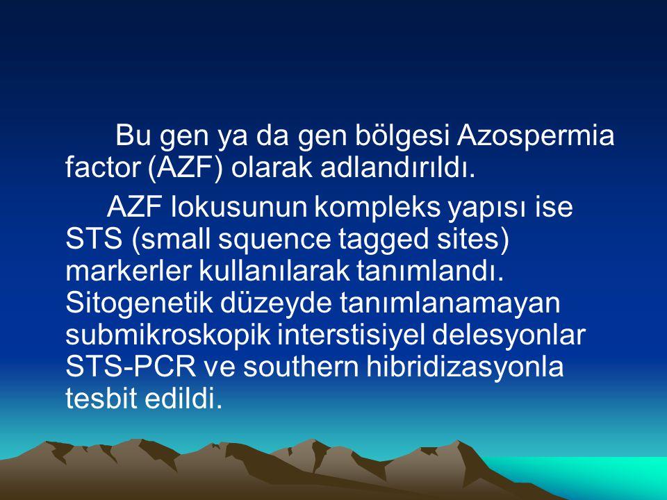 Bu gen ya da gen bölgesi Azospermia factor (AZF) olarak adlandırıldı.