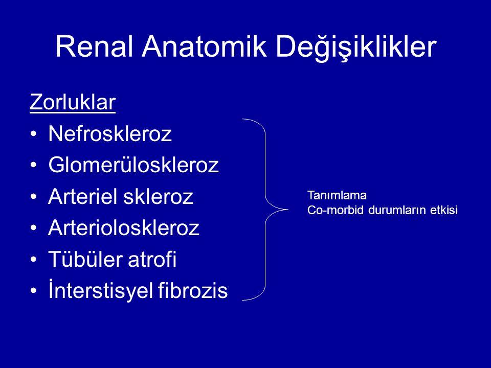 Renal Anatomik Değişiklikler