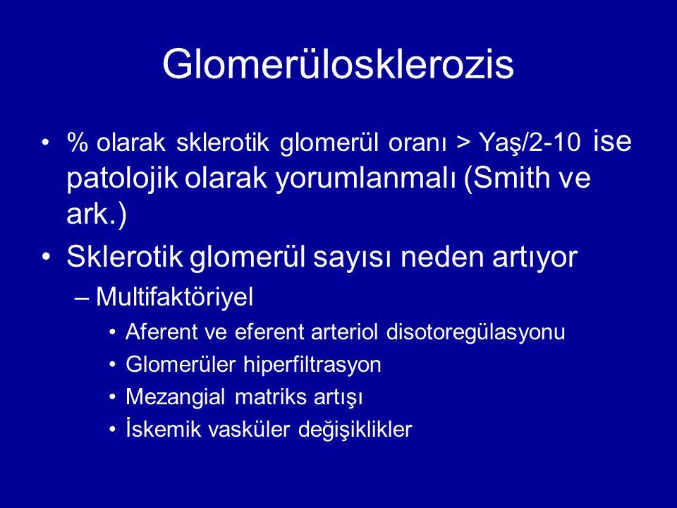Glomerülosklerozis Sklerotik glomerül sayısı neden artıyor