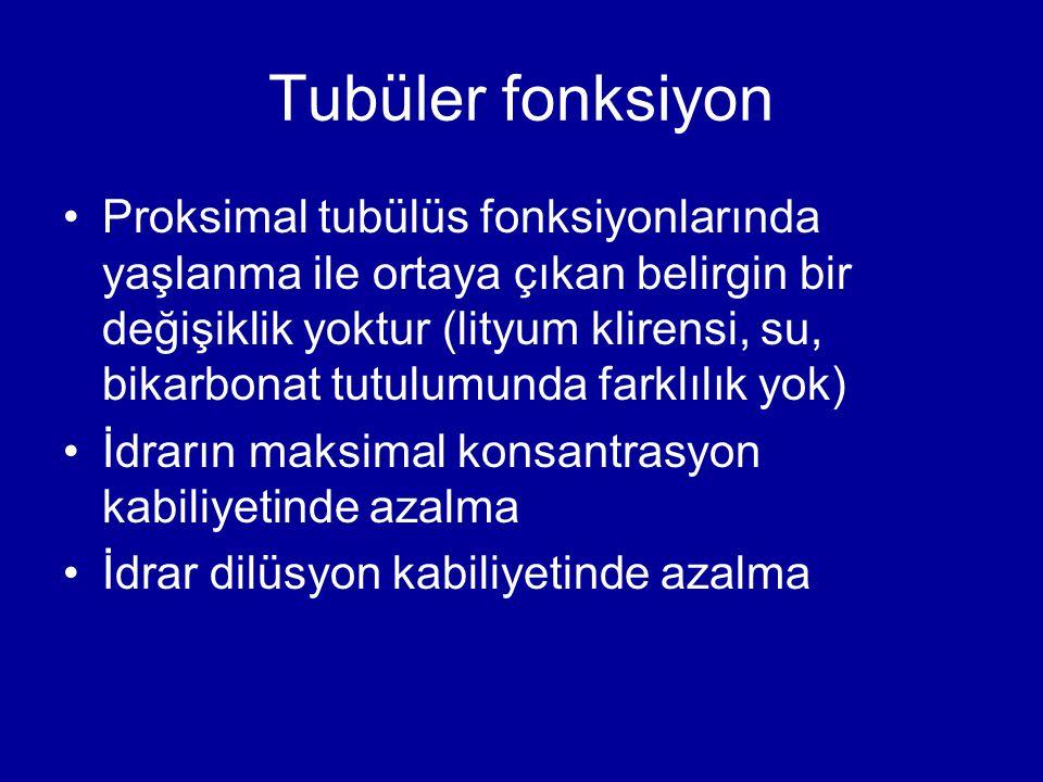 Tubüler fonksiyon