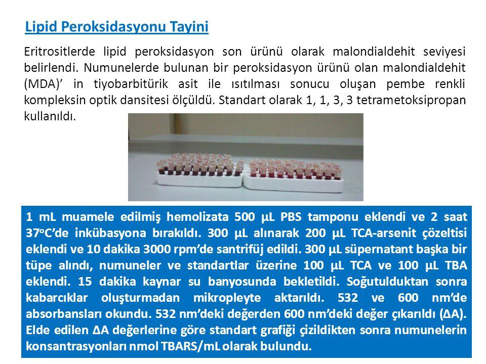 Lipid Peroksidasyonu Tayini