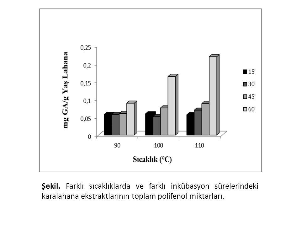 Yapılan çalışmada, toplam polifenol miktarının sıcaklığın artmasıyla ve inkübasyon süresinin artmasıyla arttığı görüldü. 110 oC'de 60 dakika inkübasyon ile en yüksek miktar elde edildi.