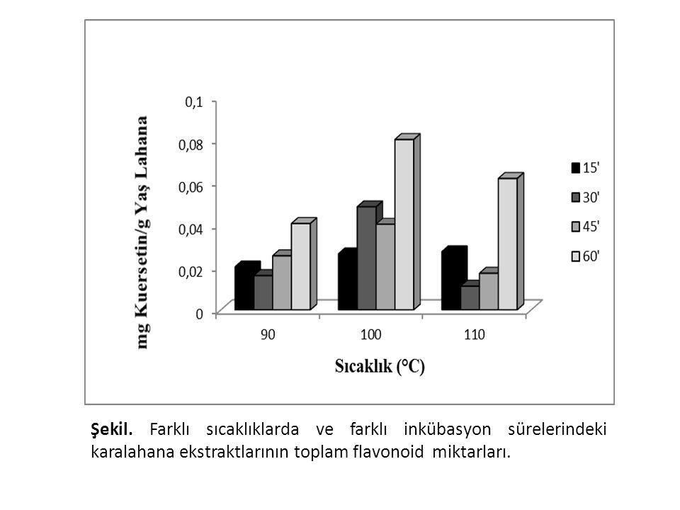 Toplam flavonoid miktarları 100oC'de en yüksekti