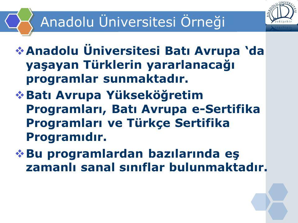 Anadolu Üniversitesi Örneği
