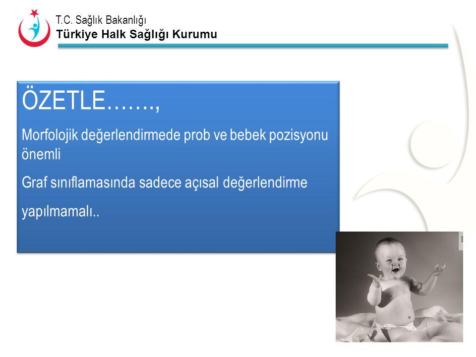 ÖZETLE……., Morfolojik değerlendirmede prob ve bebek pozisyonu önemli