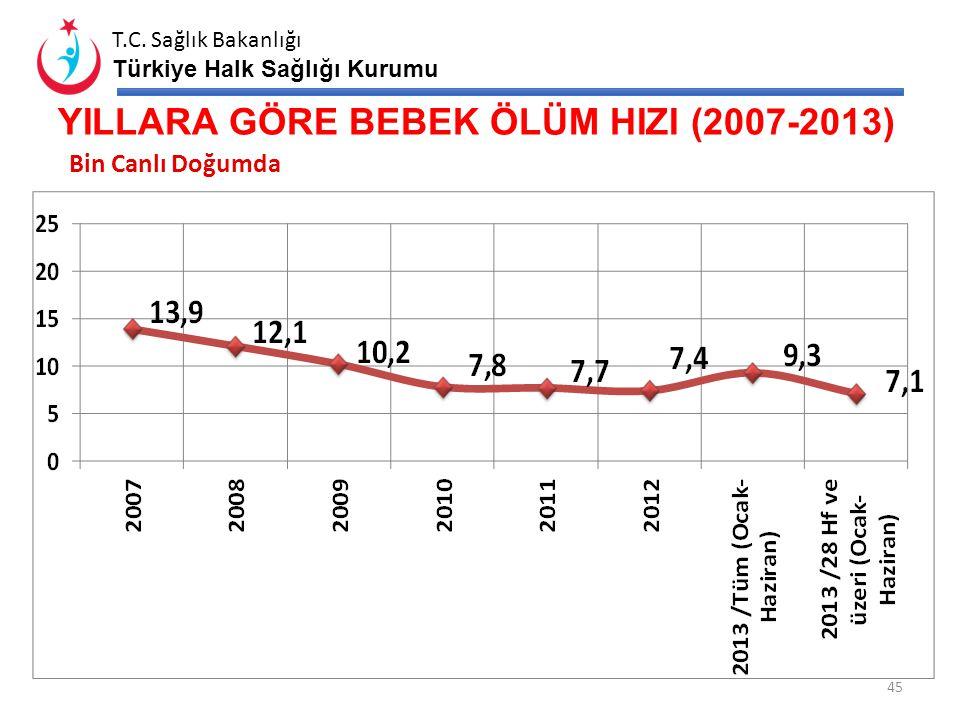 YILLARA GÖRE BEBEK ÖLÜM HIZI (2007-2013)