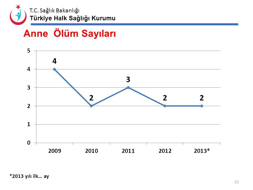 Anne Ölüm Sayıları *2013 yılı ilk… ay