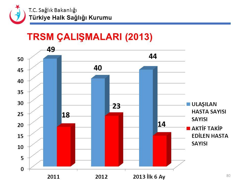 TRSM ÇALIŞMALARI (2013) *Bir önceki aya kadarki veriler bulunacaktır.