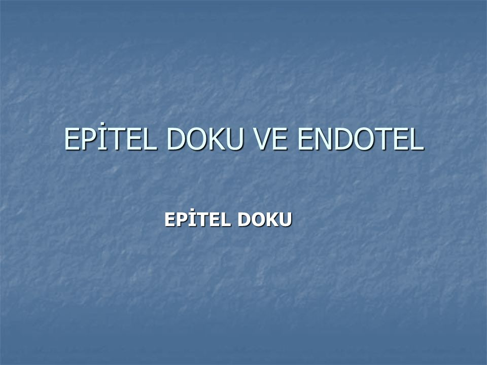 EPİTEL DOKU VE ENDOTEL EPİTEL DOKU