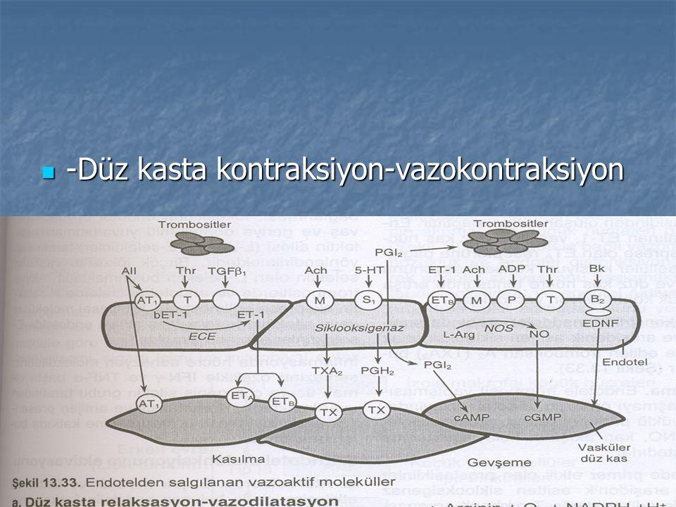 -Düz kasta kontraksiyon-vazokontraksiyon