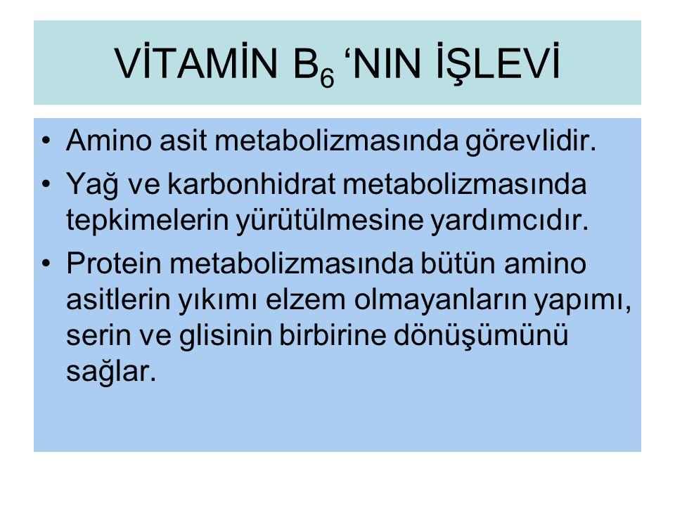 VİTAMİN B6 'NIN İŞLEVİ Amino asit metabolizmasında görevlidir.