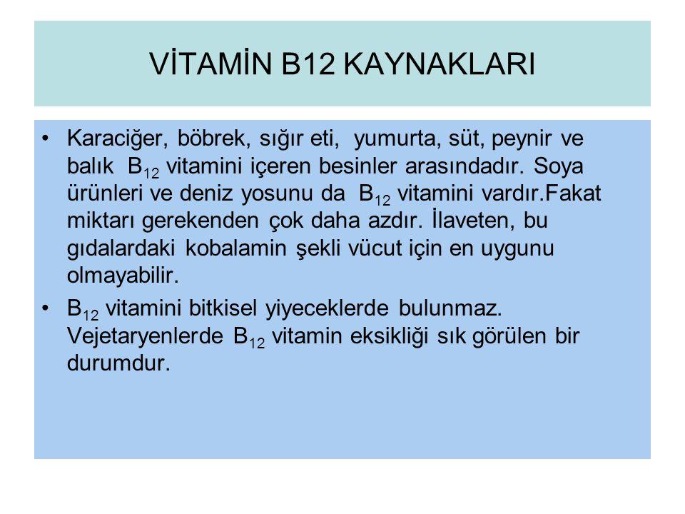 VİTAMİN B12 KAYNAKLARI