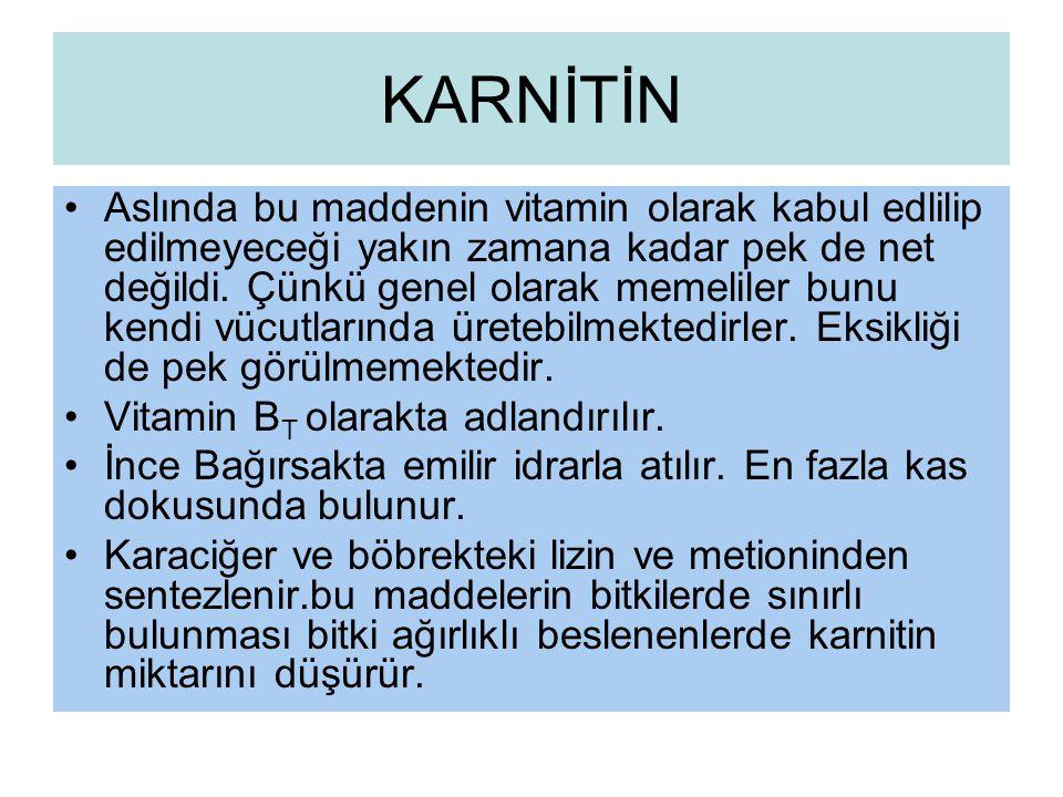 KARNİTİN