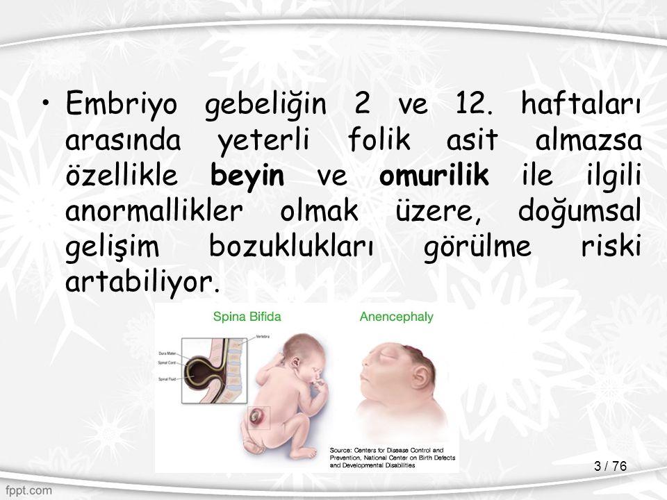 Embriyo gebeliğin 2 ve 12.