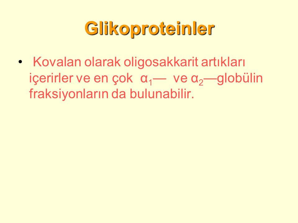 Glikoproteinler Kovalan olarak oligosakkarit artıkları içerirler ve en çok α1— ve α2—globülin fraksiyonların da bulunabilir.