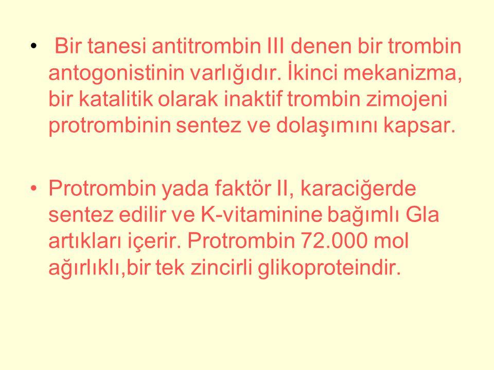 Bir tanesi antitrombin III denen bir trombin antogonistinin varlığıdır