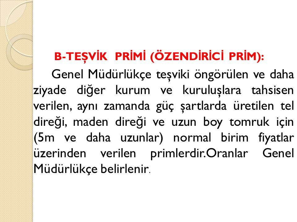 B-TEŞVİK PRİMİ (ÖZENDİRİCİ PRİM):