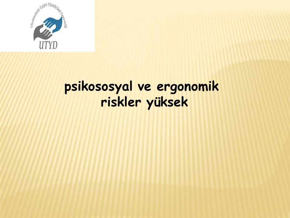 psikososyal ve ergonomik