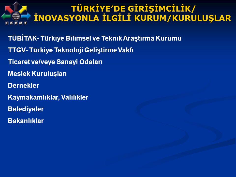 TÜRKİYE'DE GİRİŞİMCİLİK/ İNOVASYONLA İLGİLİ KURUM/KURULUŞLAR