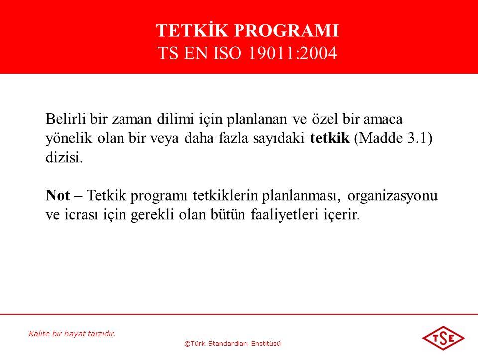 TETKİK PROGRAMI TS EN ISO 19011:2004
