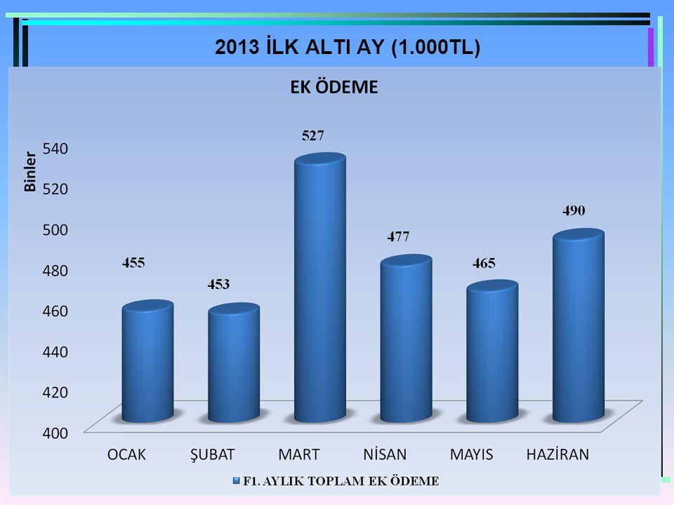 2013 İLK ALTI AY (1.000TL)