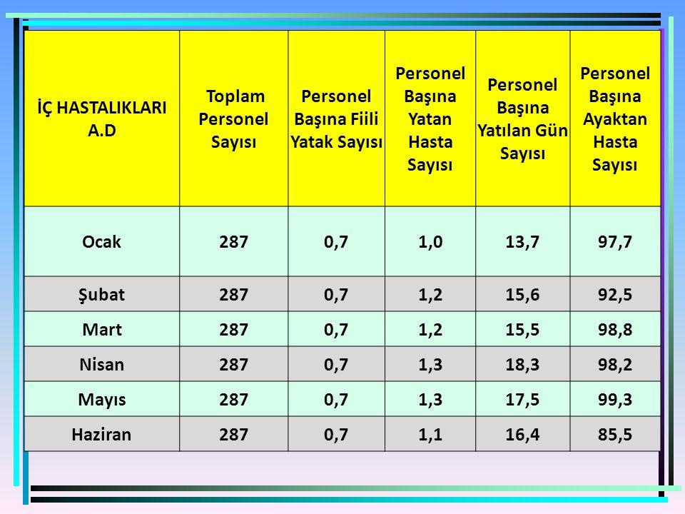 Toplam Personel Sayısı Personel Başına Fiili Yatak Sayısı