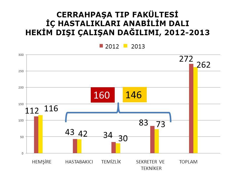 CERRAHPAŞA TIP FAKÜLTESİ İÇ HASTALIKLARI ANABİLİM DALI HEKİM DIŞI ÇALIŞAN DAĞILIMI, 2012-2013