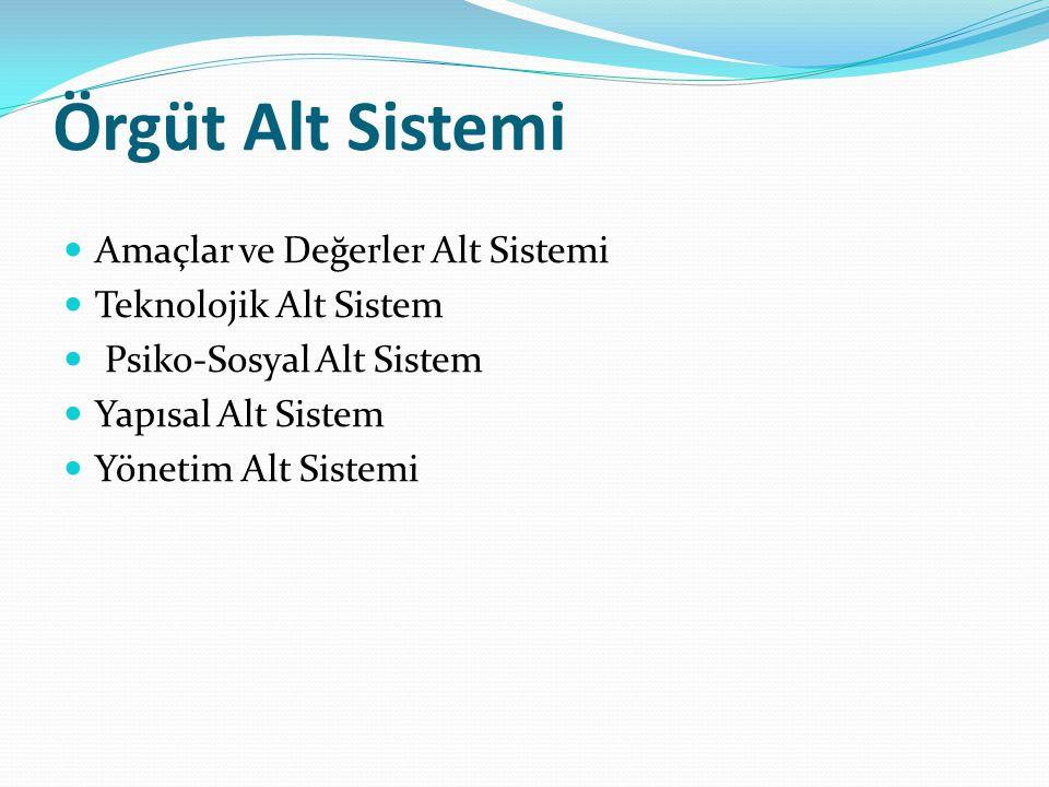 Örgüt Alt Sistemi Amaçlar ve Değerler Alt Sistemi