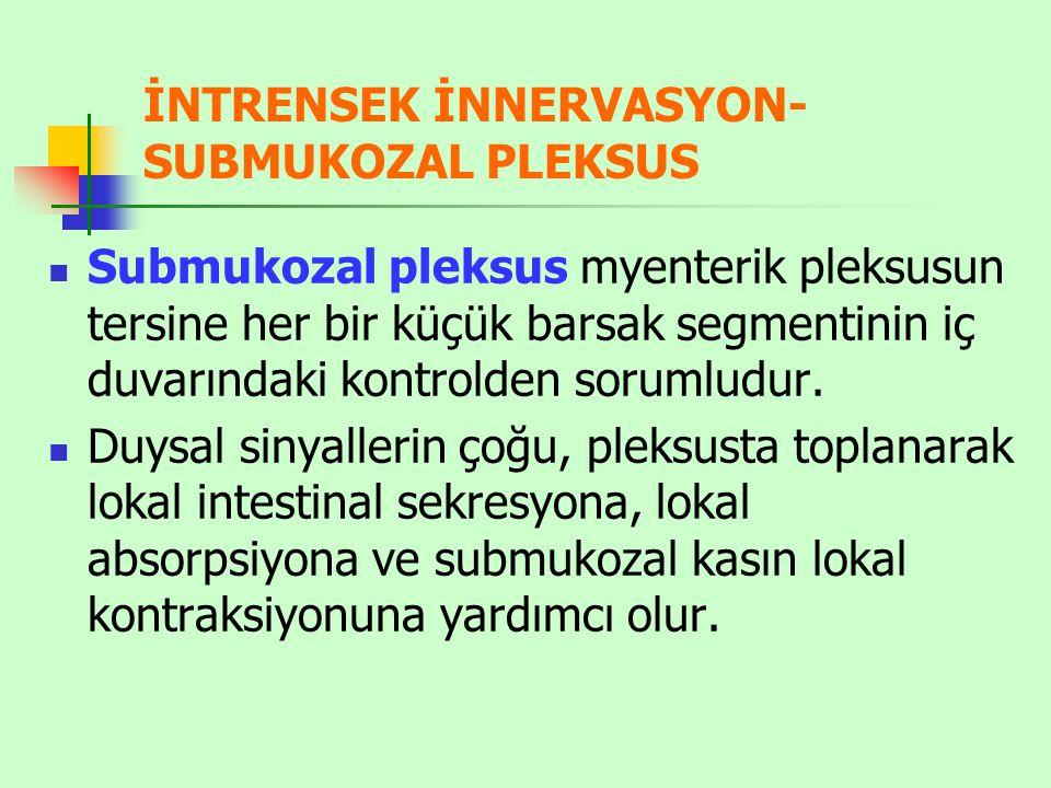 İNTRENSEK İNNERVASYON-SUBMUKOZAL PLEKSUS