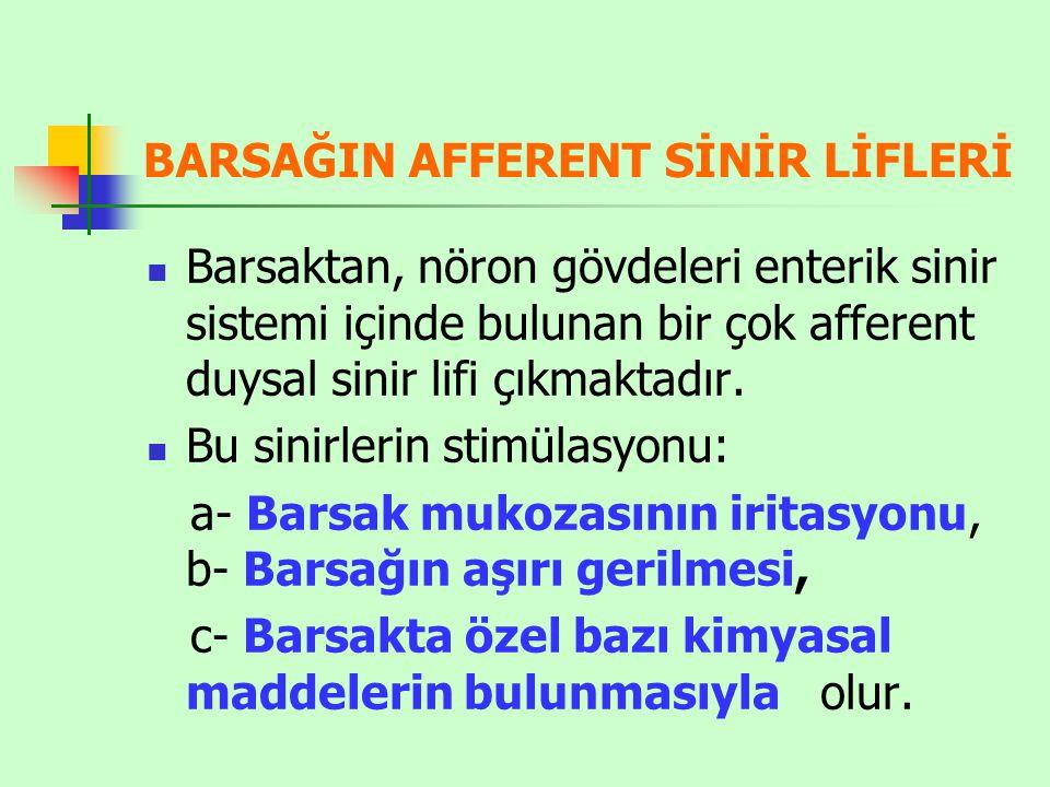 BARSAĞIN AFFERENT SİNİR LİFLERİ