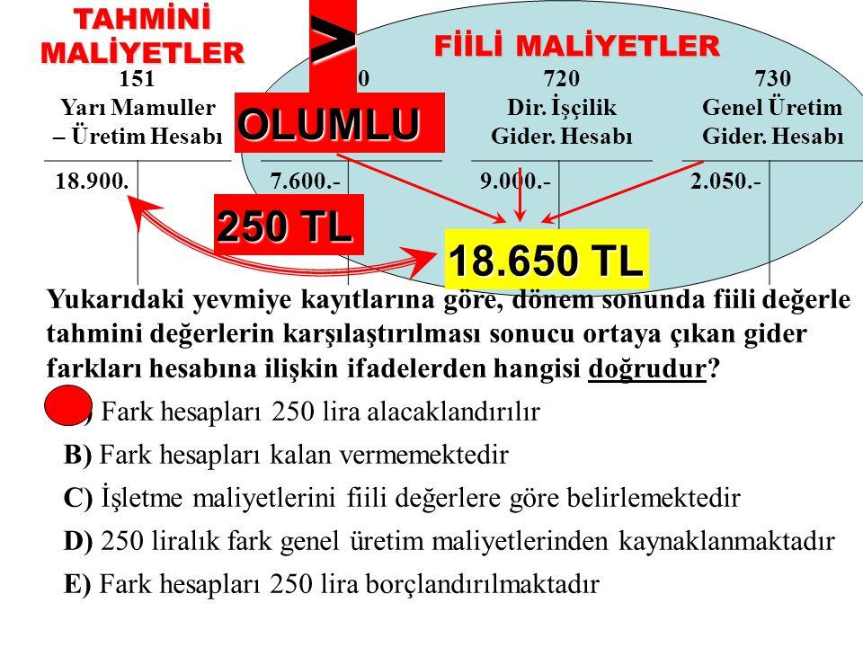 > OLUMLU 250 TL 18.650 TL TAHMİNİ MALİYETLER FİİLİ MALİYETLER