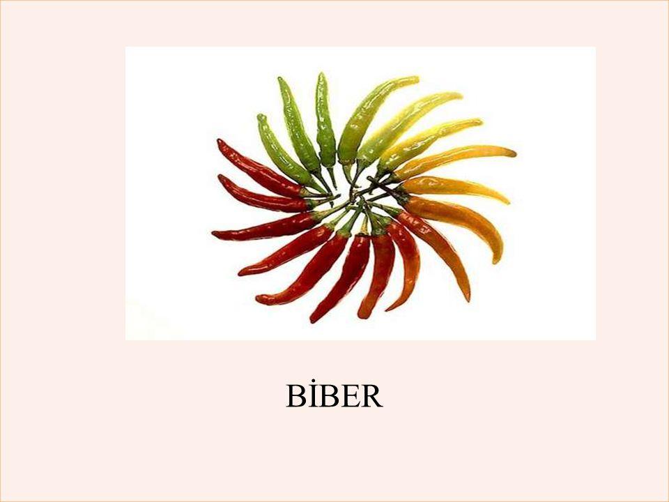 BİBER