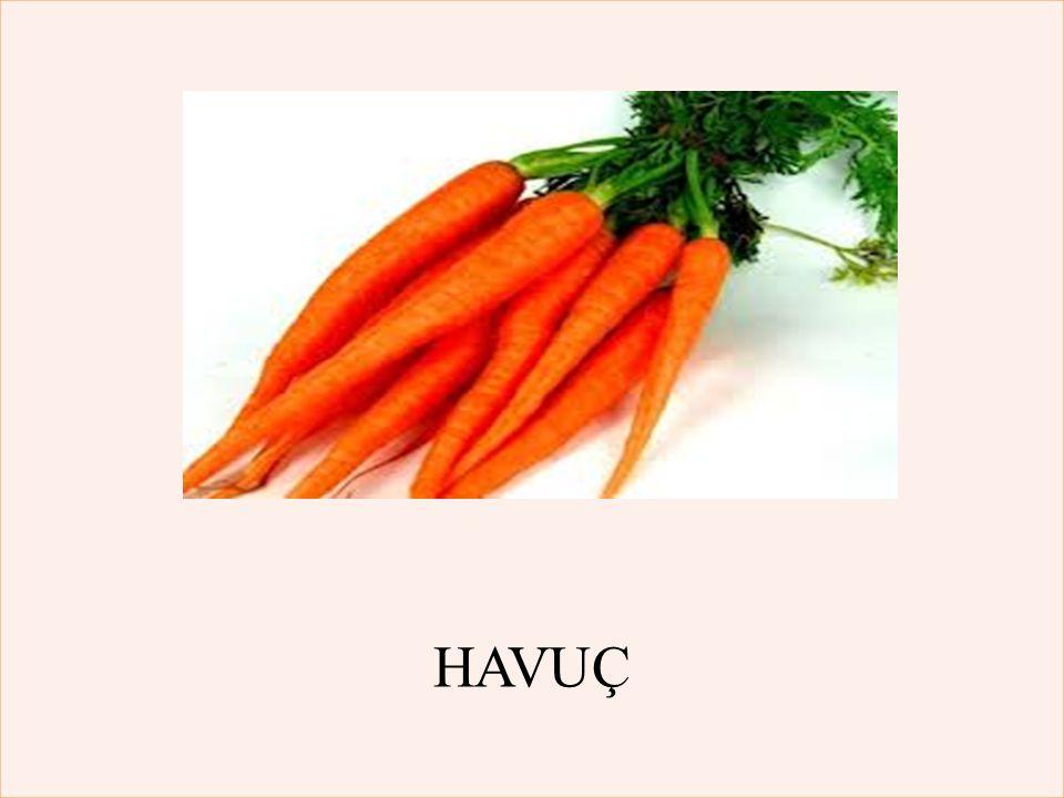 HAVUÇ