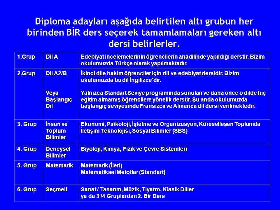 Diploma adayları aşağıda belirtilen altı grubun her birinden BİR ders seçerek tamamlamaları gereken altı dersi belirlerler.