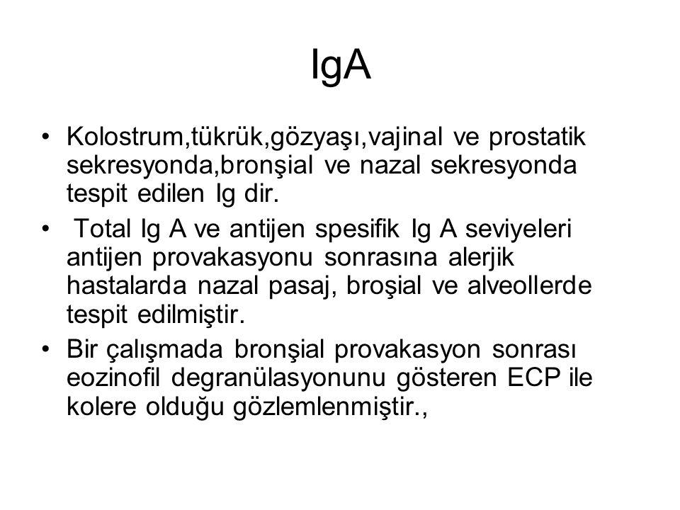 IgA Kolostrum,tükrük,gözyaşı,vajinal ve prostatik sekresyonda,bronşial ve nazal sekresyonda tespit edilen Ig dir.