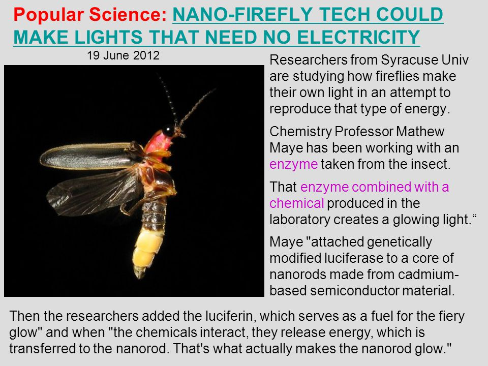 Popular Science: Nano-Firefly Tech Could Make Lights That Need No Electricity