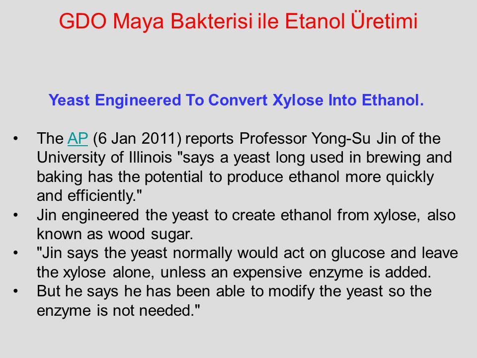 GDO Maya Bakterisi ile Etanol Üretimi