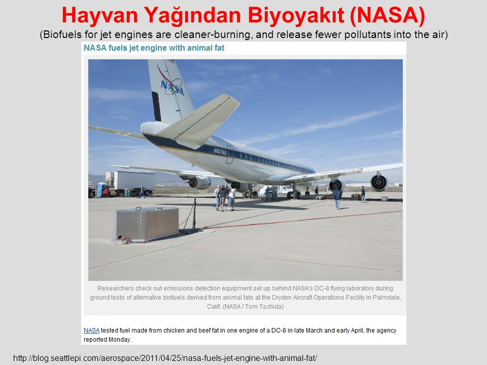 Hayvan Yağından Biyoyakıt (NASA) (Biofuels for jet engines are cleaner-burning, and release fewer pollutants into the air)